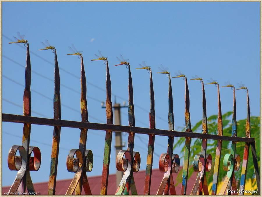 """Попытка решения """"в цвете"""" решетки ограды пансионата. Тарханкут. Оленевка. Фото - © Дорис Ершова"""