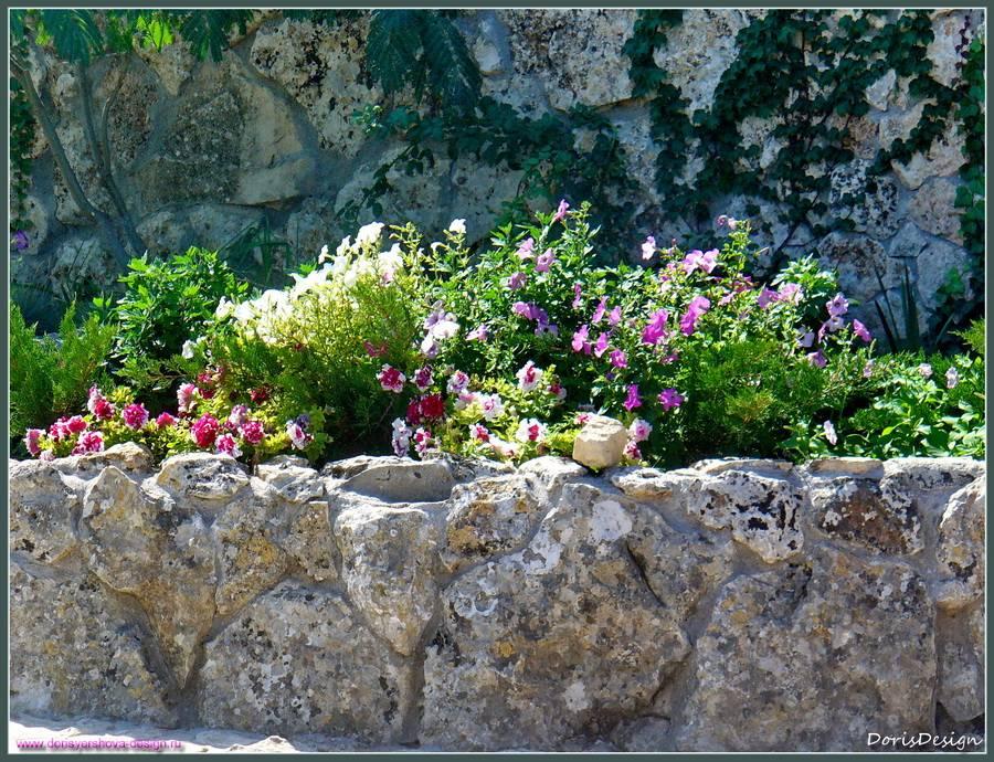 Цветник. Тарханкут. Оленевка. Фото - © Дорис Ершова, белый камень, известняк, петуньи.