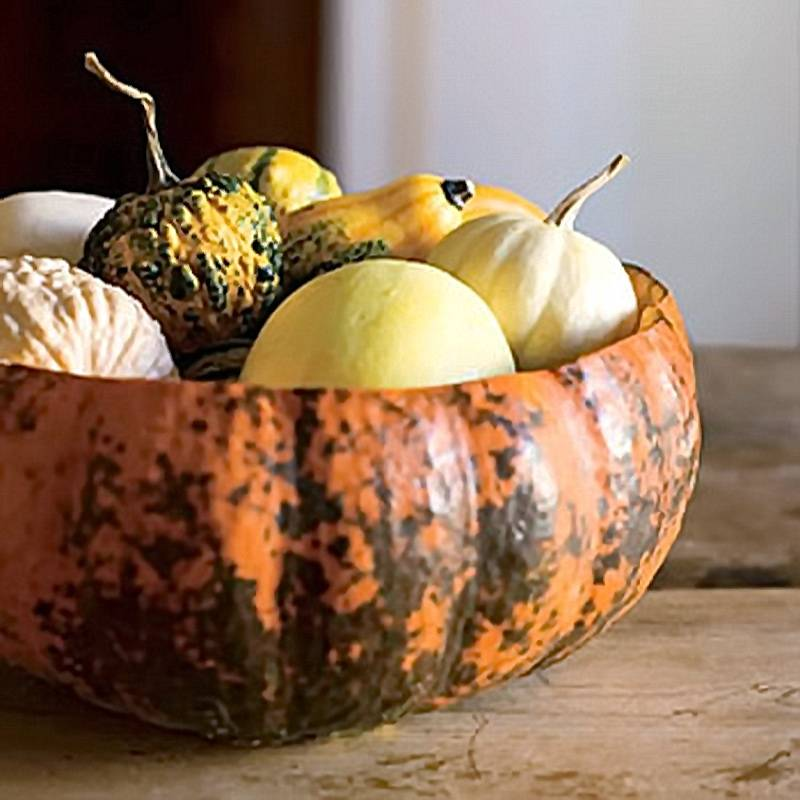 Pumpkin Bowl (bhg)