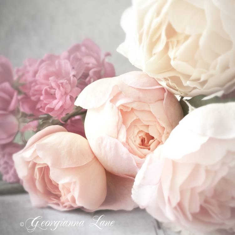 romantic_111
