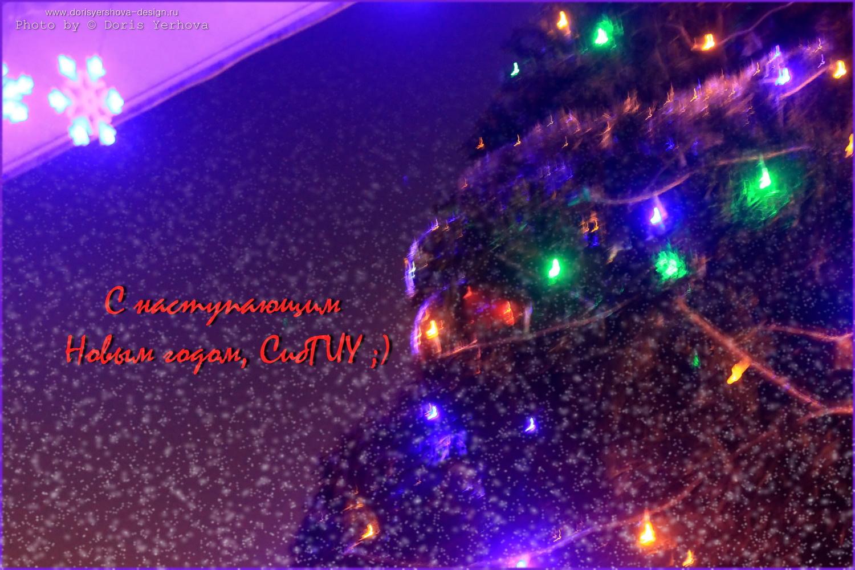 IMG_9973-1, С наступающим Новым годом, СибГИУ. Фото и дизайн - © Дорис Ершова